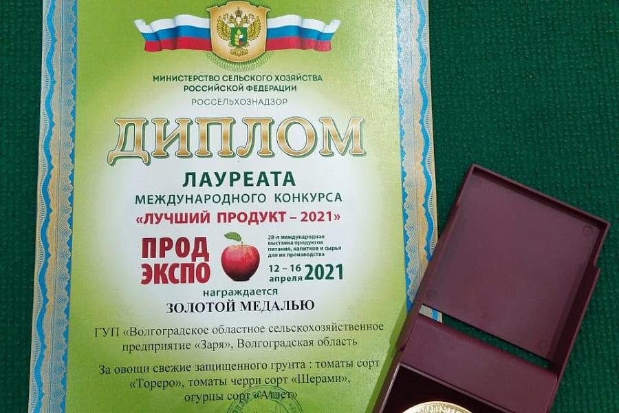 Волгоградские овощеводы — среди лучших в России